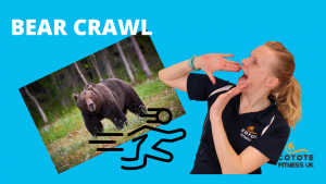 The Bear Crawl